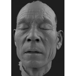 Einscan Pro HD: Scan de visage
