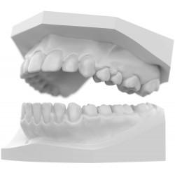 PRO 55, Sprintray, Imprimante 3D : modèle d'étude