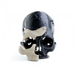 APIUM P220 - Impression 3D PEEK Médical