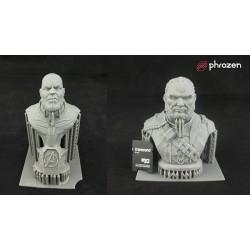 Imprimante 3D LCD Résines Phrozen Shuffle XL, Impression figurine